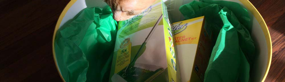 Leo schaut in Swiffer Paket