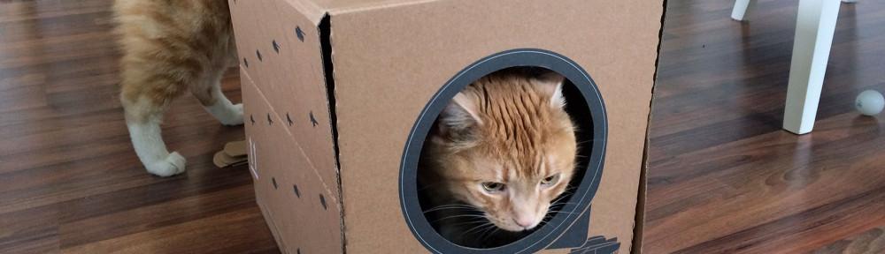 Das Poopy Cat Katzenklo wird betrachtet