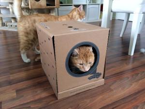 poopy cat katzenklo die einwegtoilette im test. Black Bedroom Furniture Sets. Home Design Ideas