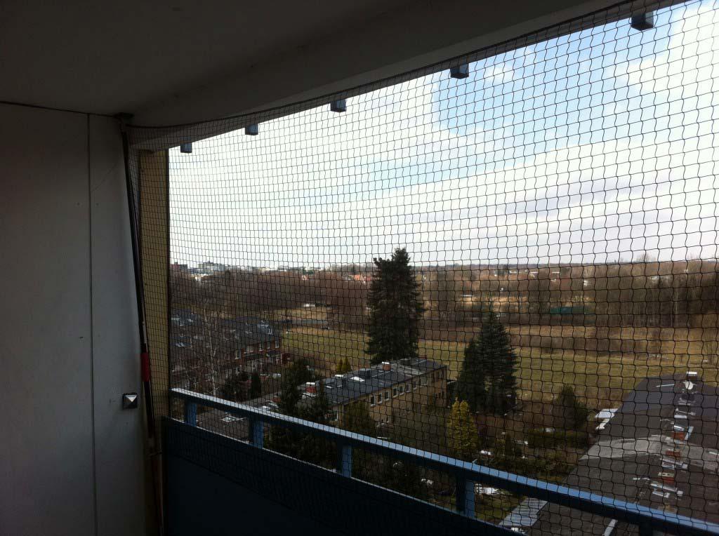 katzennetz schutz f r katzen auf dem balkon