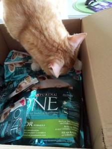 Purina One Katzenfutter Test - Das Paket