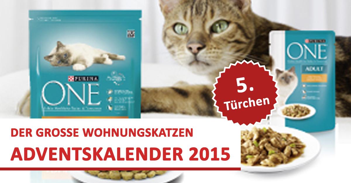 teaser_tuerchen05