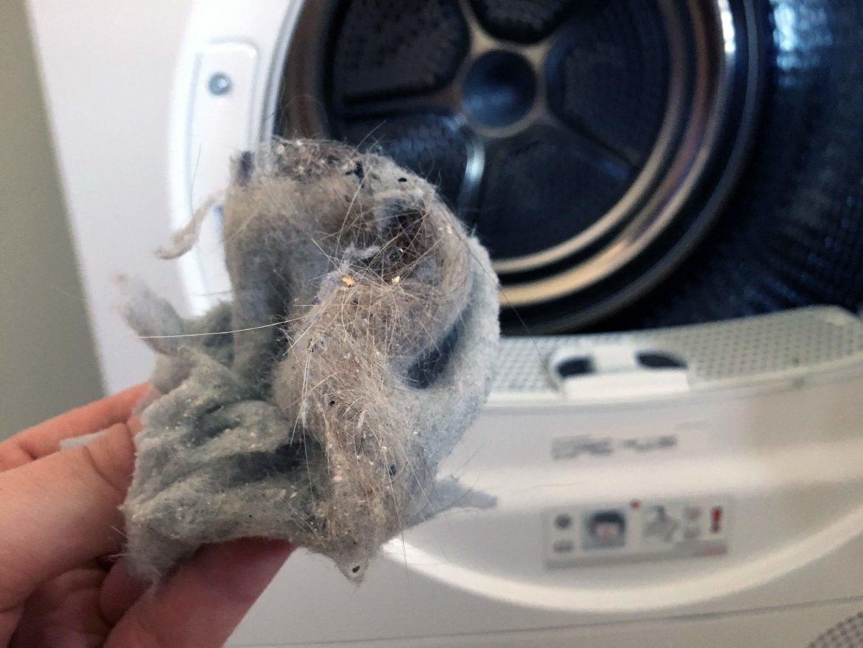 Mit einem Wäschetrockner ist das Entfernen von Katzenhaaren ganz einfach